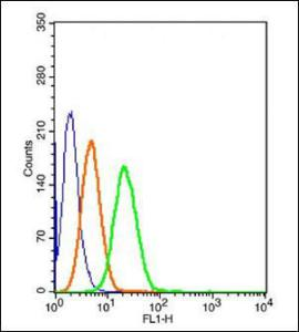 Flow cytometric analysis of unstained cells using LRP-MVP antibody.