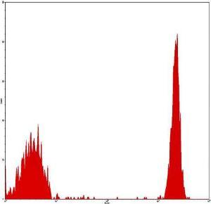 Flow cytometric analysis of peripheral blood lymphocytes using CD4 antibody (PE)