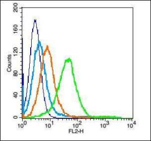 Flow cytometric analysis of Mouse spleen cell using CD9 antibody.