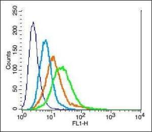 Flow cytometric analysis of H9C2 cell using TWEAKR antibody.