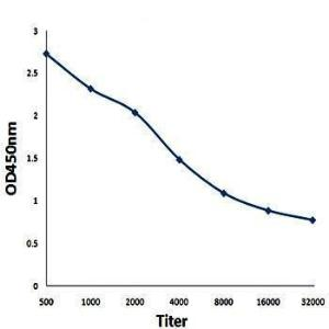 Line graph illustrates about the sensitivity range of phospho-CYLD Ser418 antibody using different concentrations